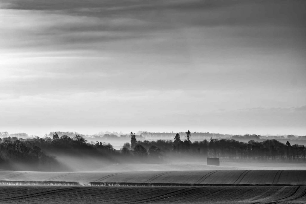 Misty morning light in the Borders